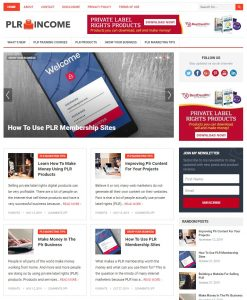 plr wp theme